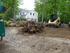 land clearing in Atlanta ga - tree removal service Atlanta ga
